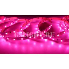 Открытая светодиодная лента SMD 3528 60LED/m IP20 12V Pink